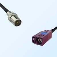 Fakra D 4004 Bordeaux Female - DVB-T TV Male Coaxial Cable Assemblies