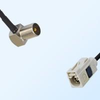 Fakra B 9001 White Female - DVB-T TV Male R/A Coaxial Cable Assemblies