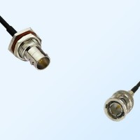 75Ohm BNC Bulkhead Female with O-Ring - BNC Male Cable Assemblies