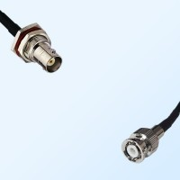 BNC Bulkhead Female with O-Ring - Mini BNC Male Cable Assemblies